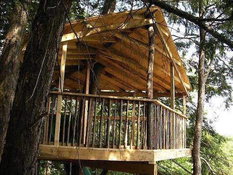 Outdoors Greenwood Studio Treehouses in Canada portrait 4
