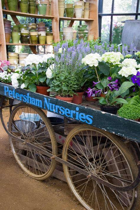 petersham  20  nurseries 39