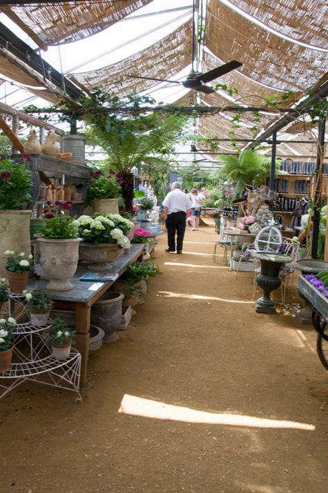 petersham  20  nurseries 69