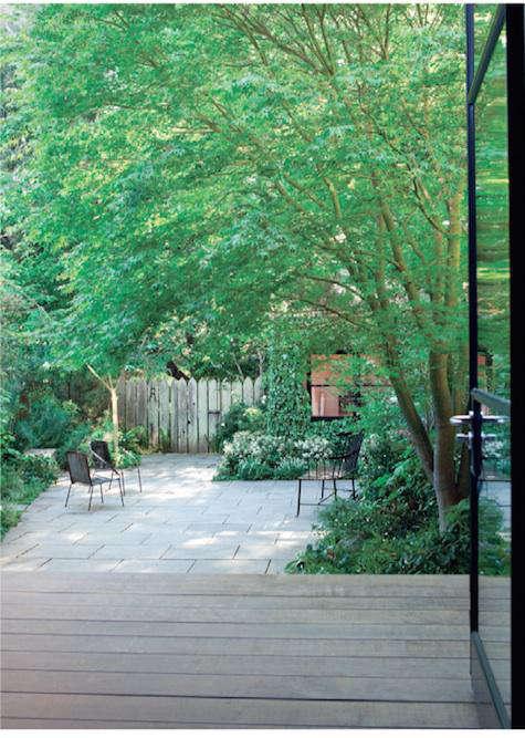 Designer Visit Scott Lewis Landscape Architecture in San Francisco portrait 4