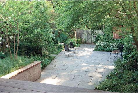 scott lewis garden 10