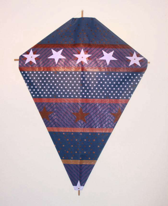 700 fredricks and mae blue and purple kite