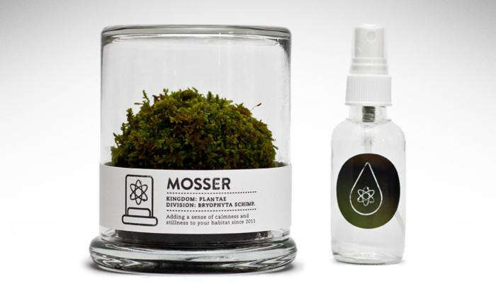 Instant Office Companion of the Moss Variety portrait 4