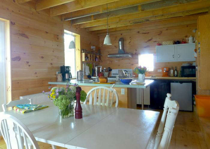 Rehab Diaries A Kitchen in Maine on a Minimal Budget portrait 7