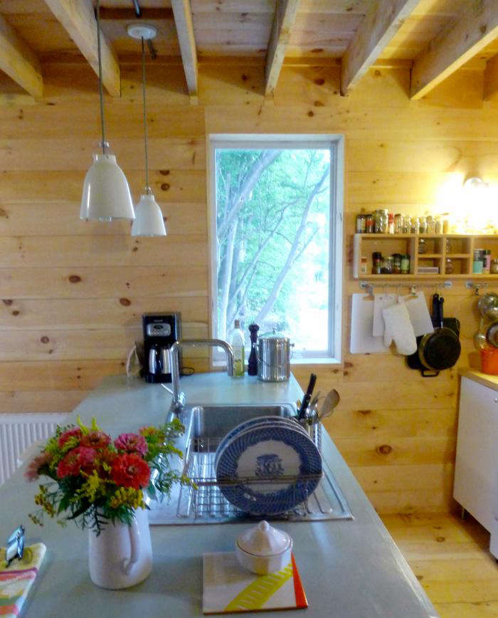 Rehab Diaries A Kitchen in Maine on a Minimal Budget portrait 10