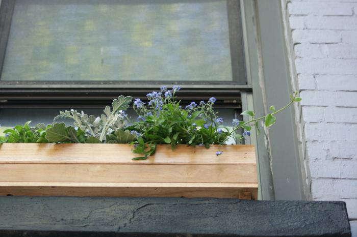 DIY A Window Box Grows in Brooklyn portrait 10