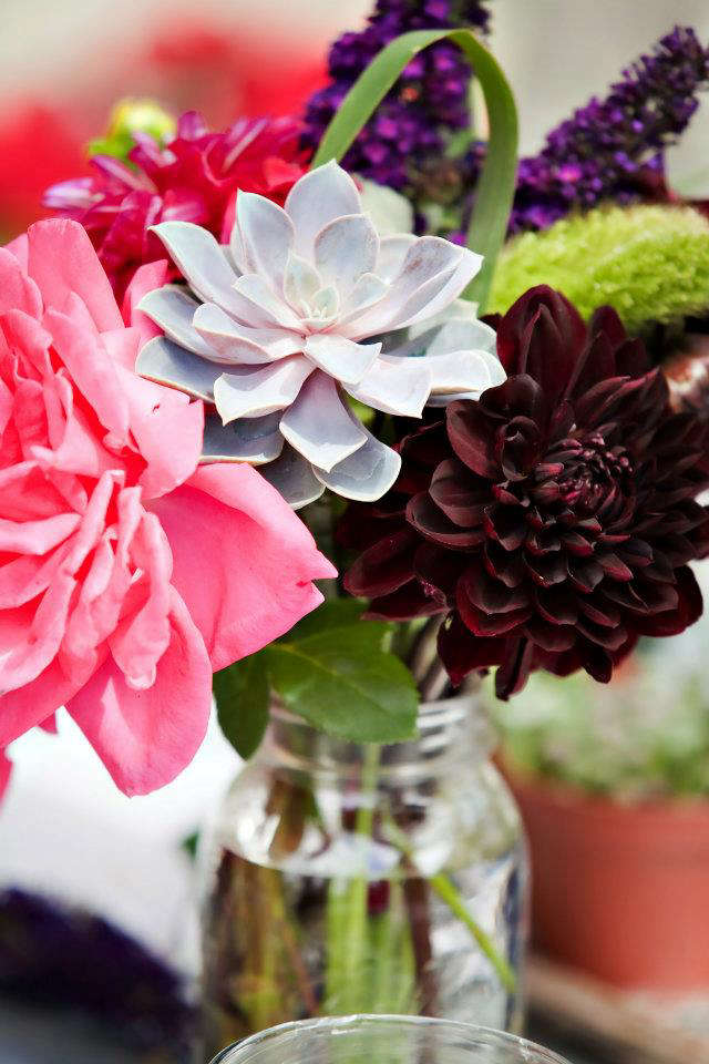 From Cupcakes and Cashmere to Backyard Bouquets  portrait 8