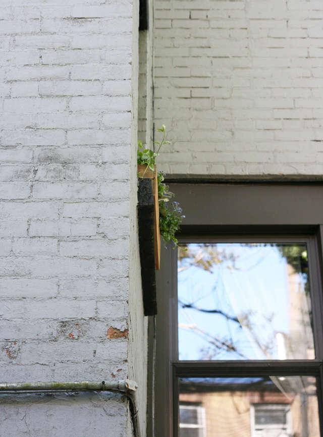 DIY A Window Box Grows in Brooklyn portrait 5