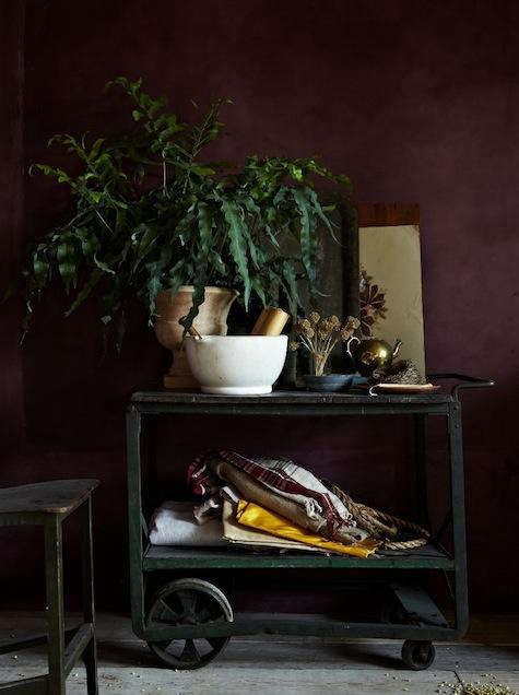 Restaurant Visit Bellocq Tea Atelier Opens Today in Brooklyn portrait 4