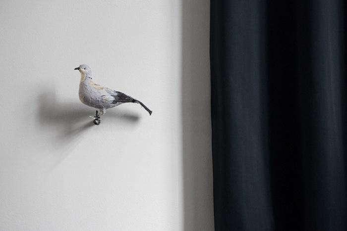700 bar and co bird on wall