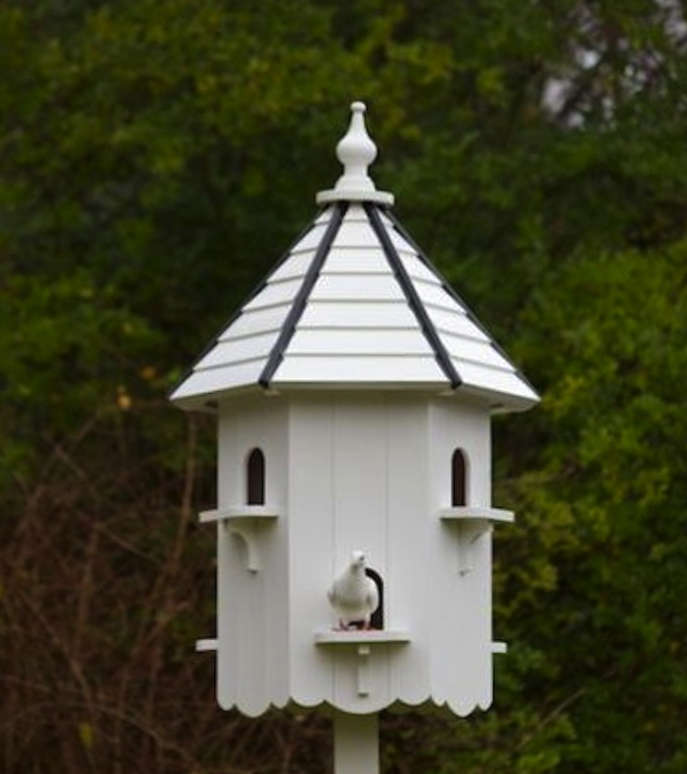 Luxurious Digs for the Birds portrait 5