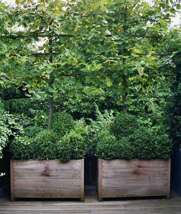 Worlds Most Beautiful Garden Planters by Way of Belgium portrait 4