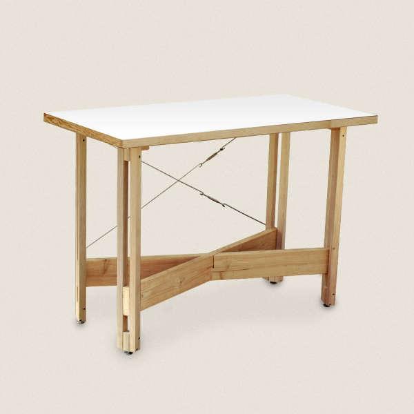 tinkering monkey desk 1