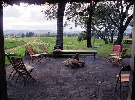 Restaurant Visit Scribe Winery in Sonoma portrait 12