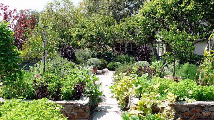 700 art luna kitchen garden 2