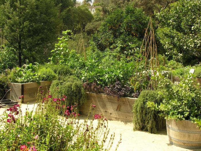 700 art luna kitchen garden far