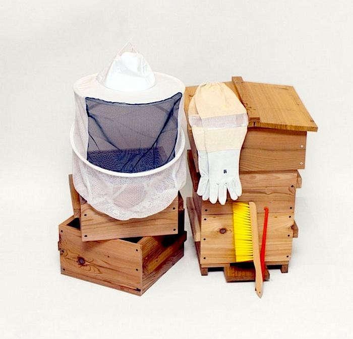 700 bee thinking starter kit