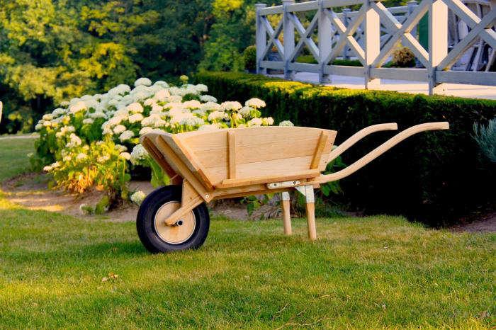 Wheelbarrow Chic from La Mule portrait 5