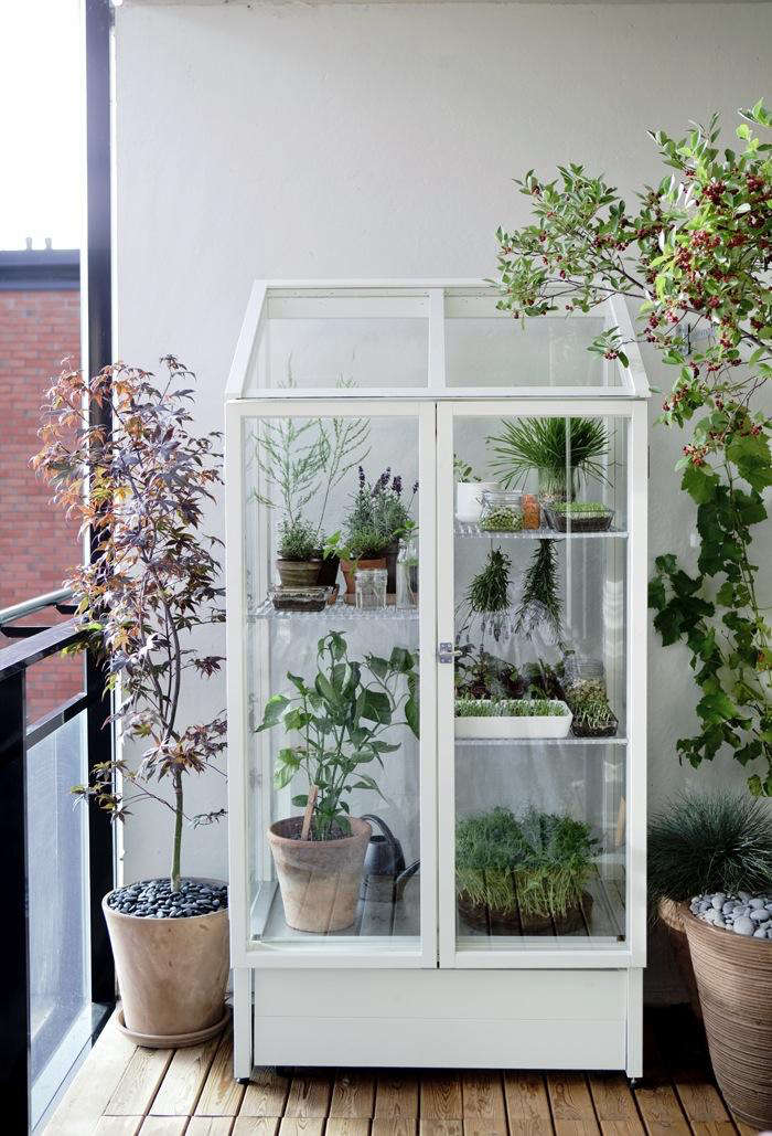 A Green Vitrine for Your Balcony portrait 3