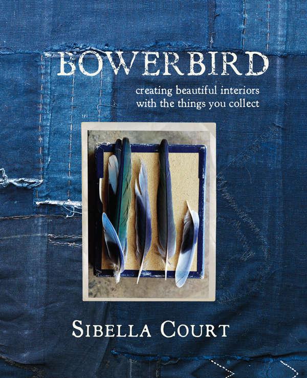 A New Book from Sibella Court Australias Bowerbird portrait 10