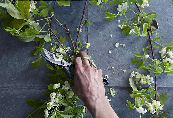 gardenista aya brackett photo 1