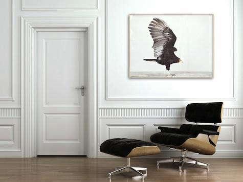 animal print shop bird