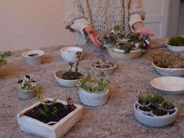 700 cecile daladier vases plants table