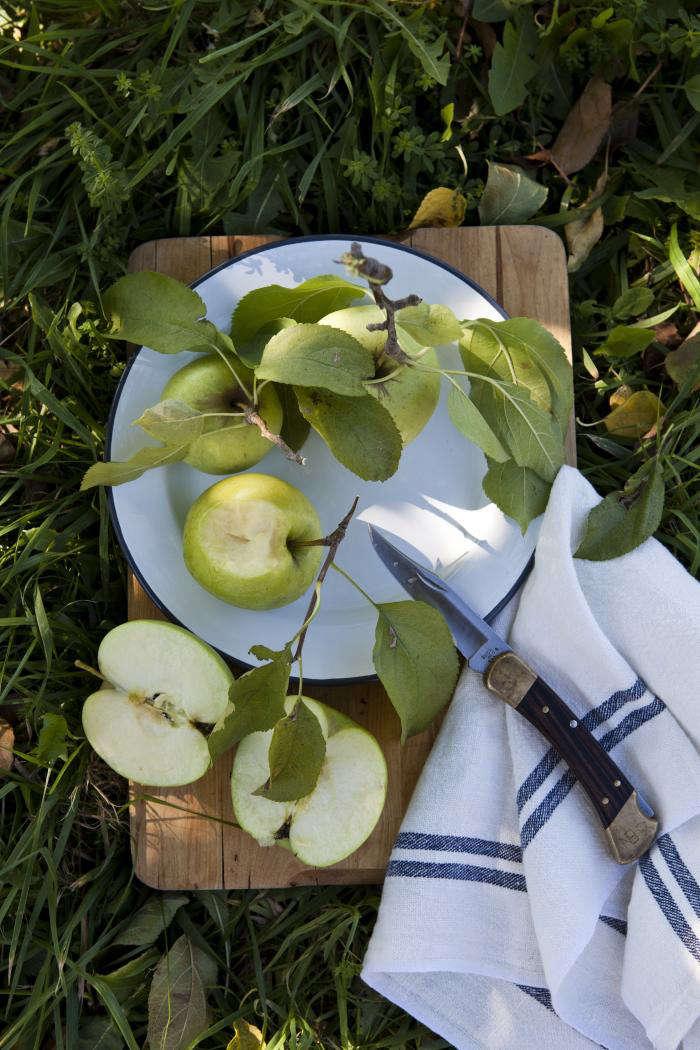 700 nicole franzen apple picnic