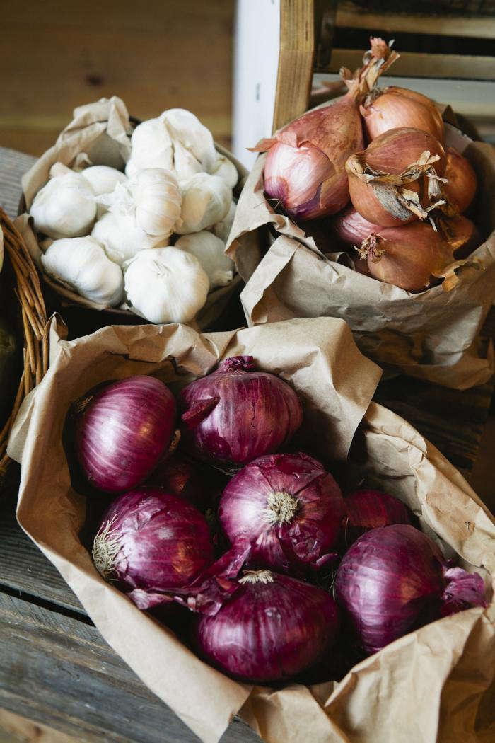 700 nicole franzen colored onions
