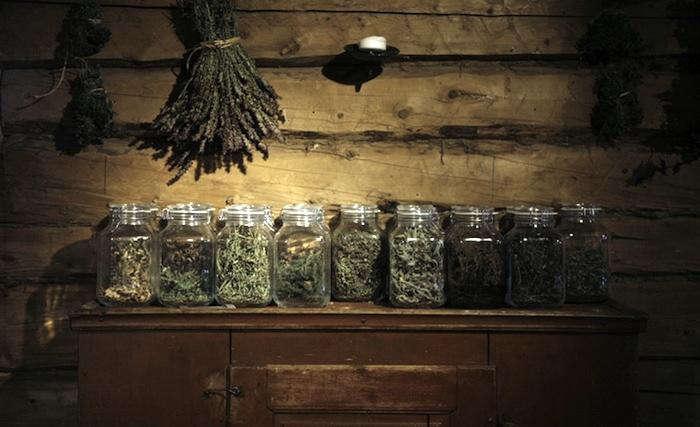 700 faviken herbs