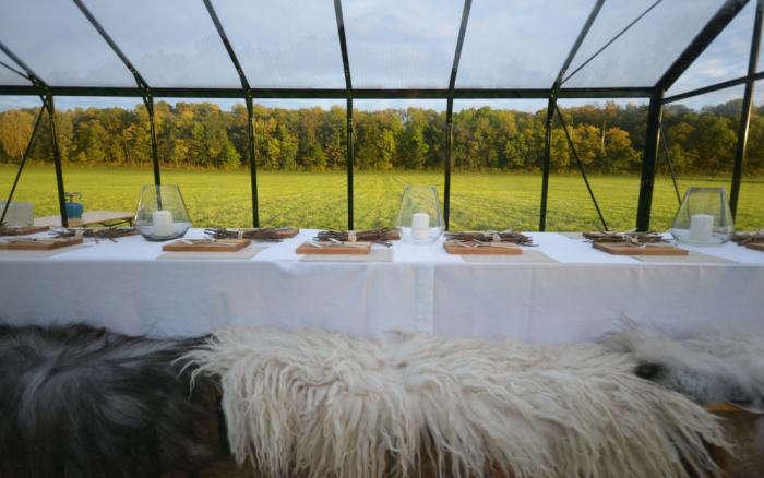 700 food studio sheepskin