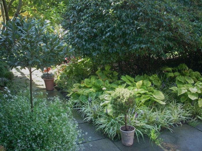 700 leva garden pots