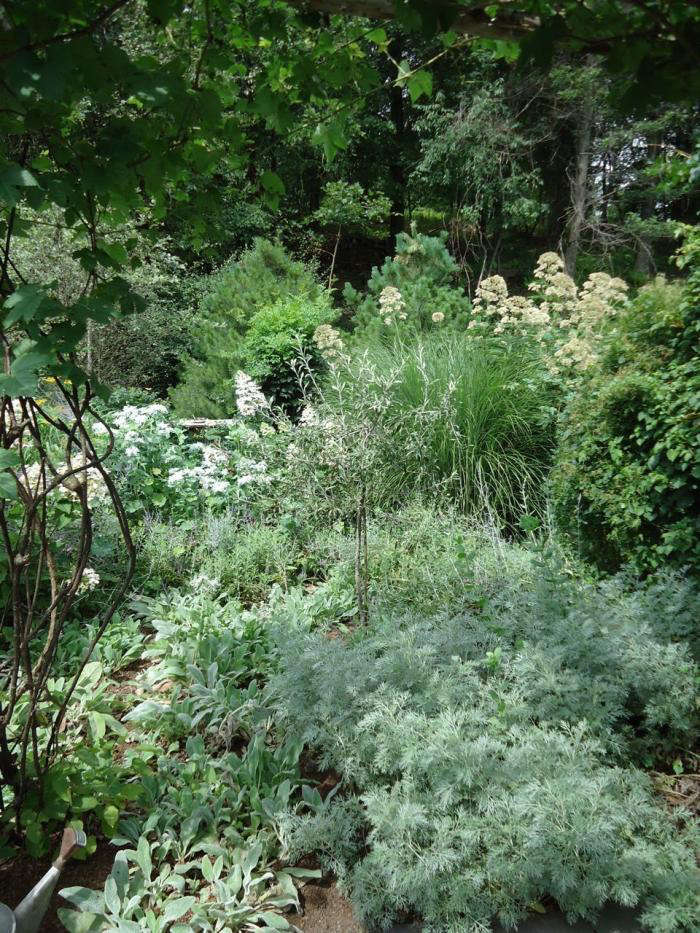 700 leva garden silver border