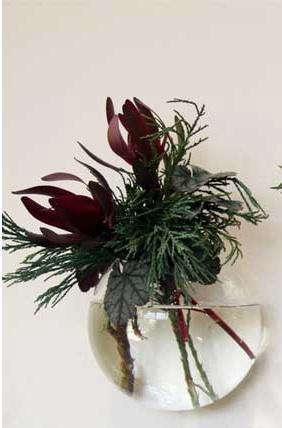 flora  20  grubb  20  hanging  20  bubble  20  vase