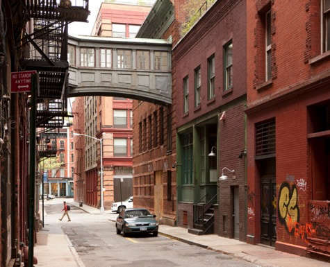 Architect Visit Diana Kellogg in NYC portrait 16