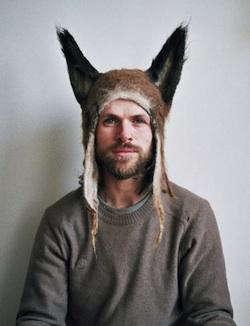 hairy fox