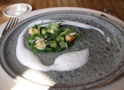 Restaurant Visit Noma in Copenhagen portrait 9