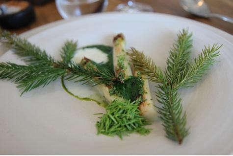 Restaurant Visit Noma in Copenhagen portrait 11