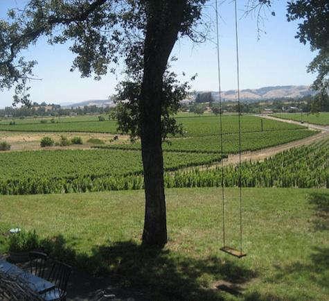 Restaurant Visit Scribe Winery in Sonoma portrait 13
