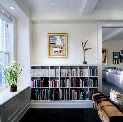 platt dana bookshelves 2
