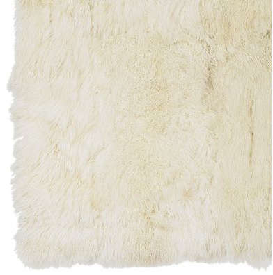 Shoppers Diary Exotic Rugs on Sale at WilliamsSonoma Home portrait 5