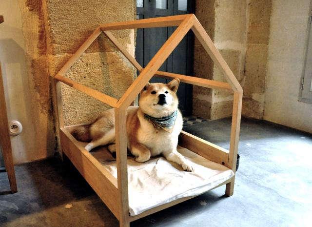 petit atelier dog bed pompom