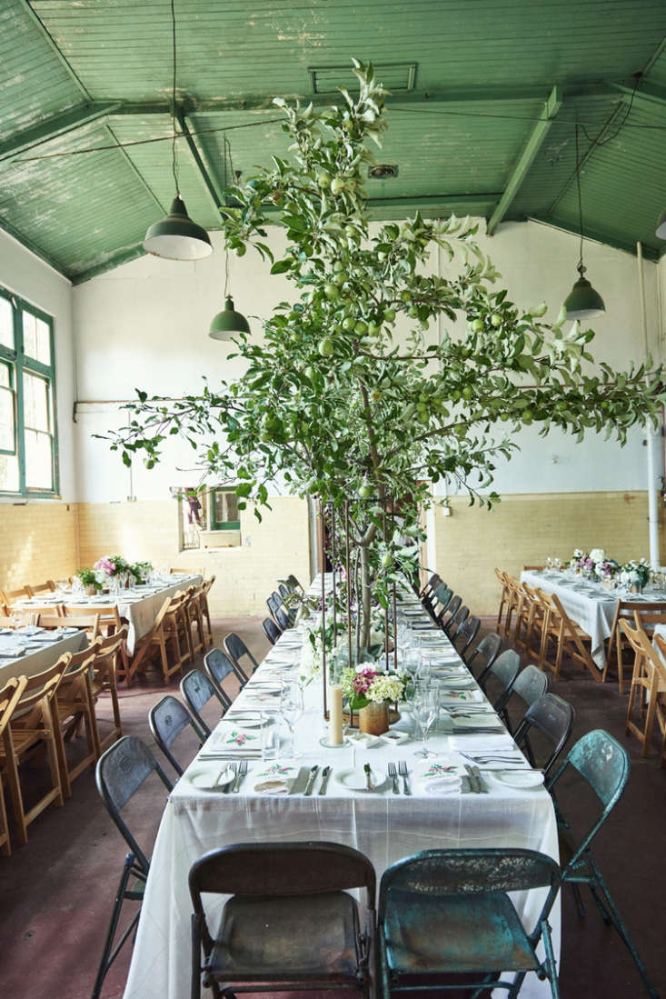 butterland events space in australia 10