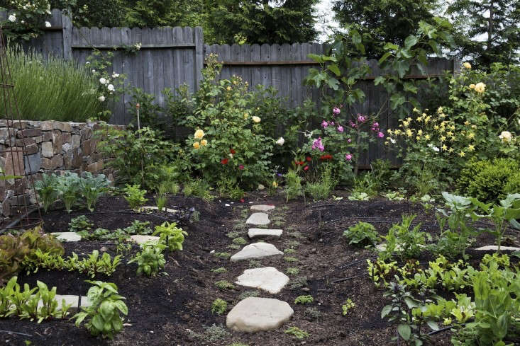 In her first installment of the twice-monthlyYour First Garden column, Fan demystifies topsoil—what it is, why you need it, and the best place to find some. Read more inYour First Garden: What You Need to Know About Topsoil. Photograph by Nicole Franzen.