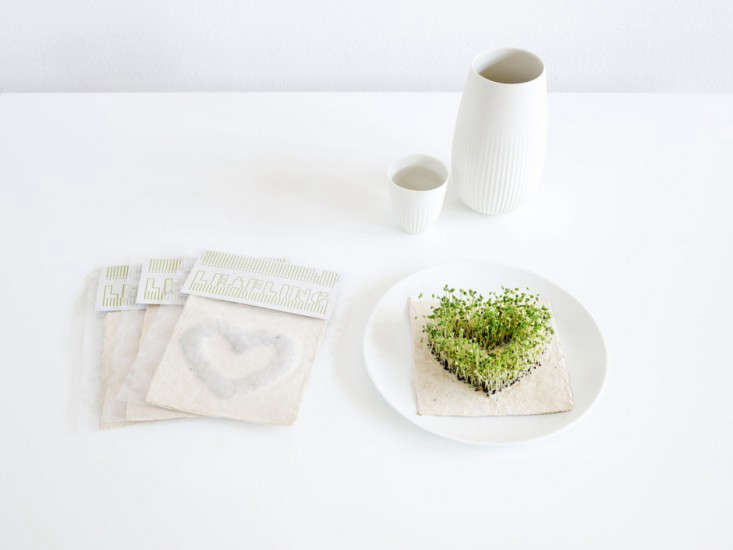 say it with microgreens:an edible valentine&#8\2\17;s day gift. 10