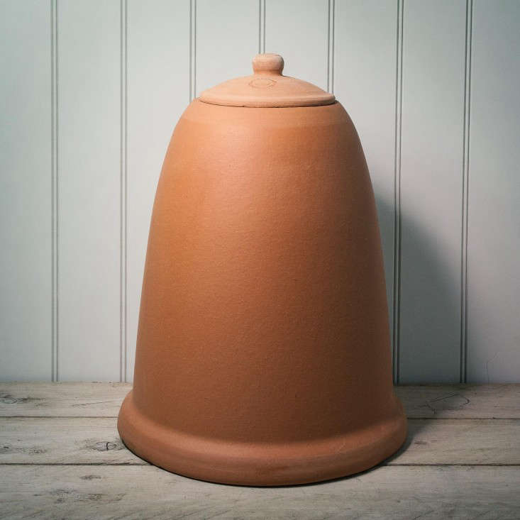 the secret to tender, early shoots of rhubarb? meet the terracotta forcing do 10