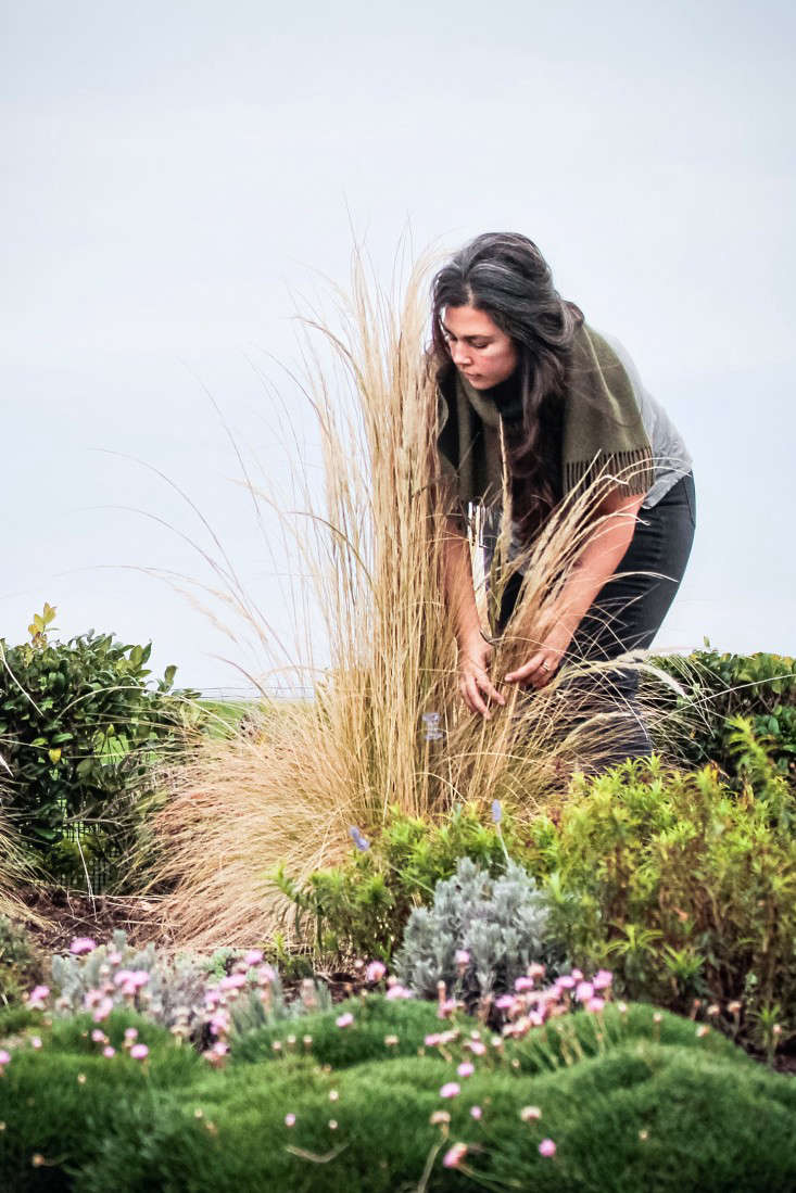 garden designer jennifer lee segale prunes and brushes grasses by hand ingard 10