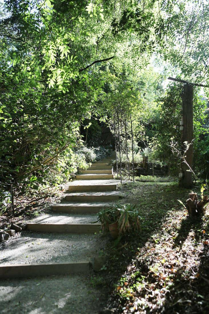 at a native garden inbelgrave, australia, permaculturist miranda mueller was  10