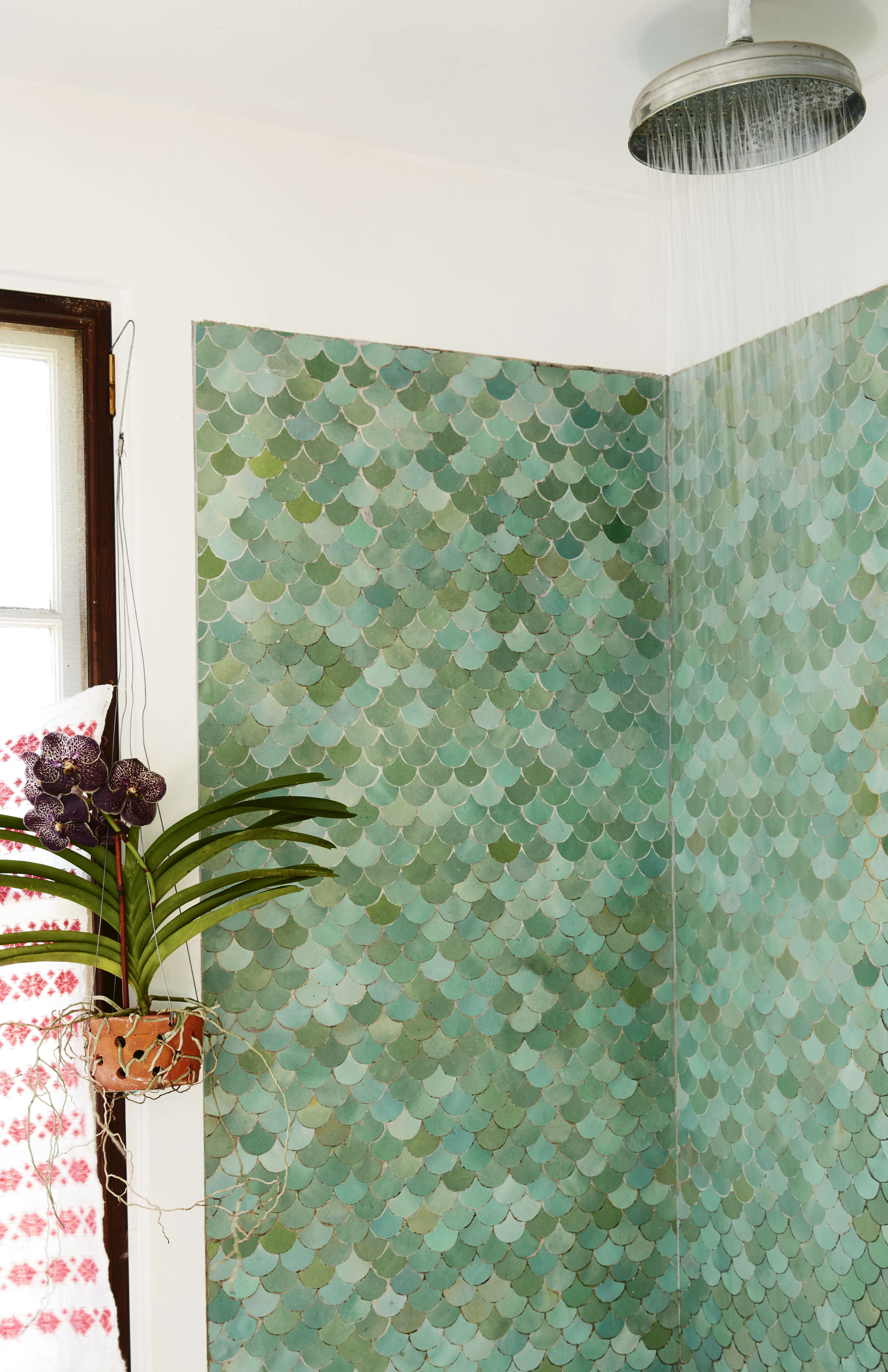 Moroccan glazed fish-scale tile and a Vanda orchid in the downstairs bath.