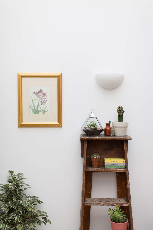 Rosie Birkett's white kitchen with green plants, Photograph by Helen Cathcart | Remodelista